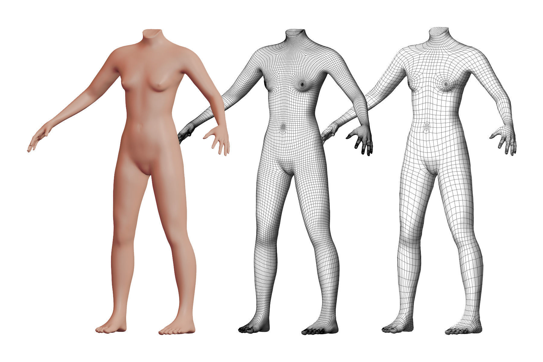 Character 01 High and Low-poly -  Body Female