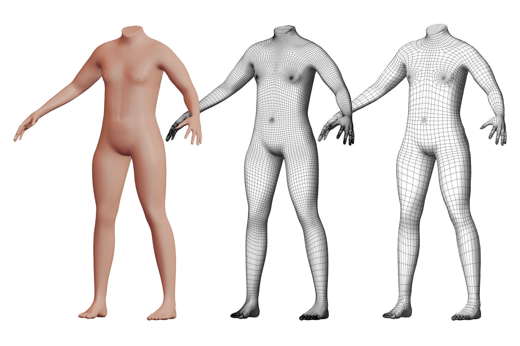 Character 02 High and Low-poly -  Body male