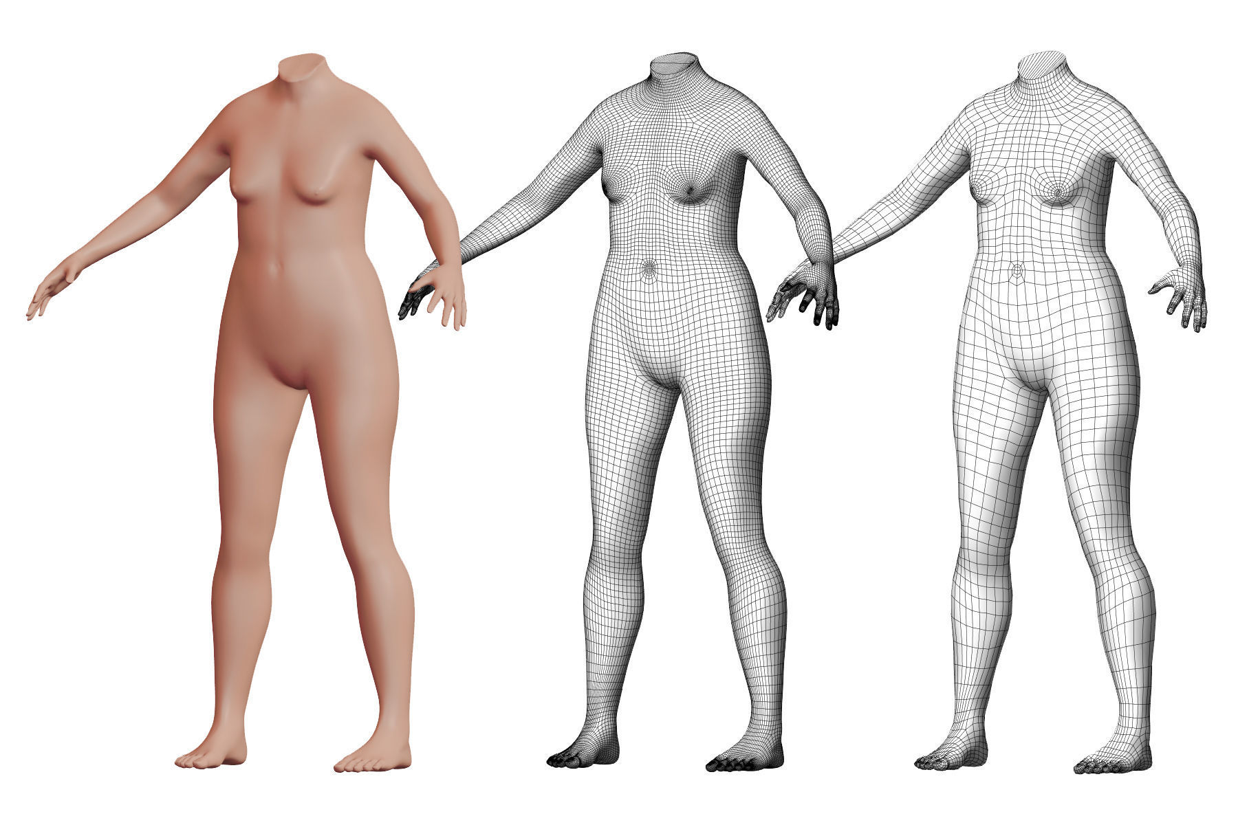 Character 04 High and Low-poly -  Body Female