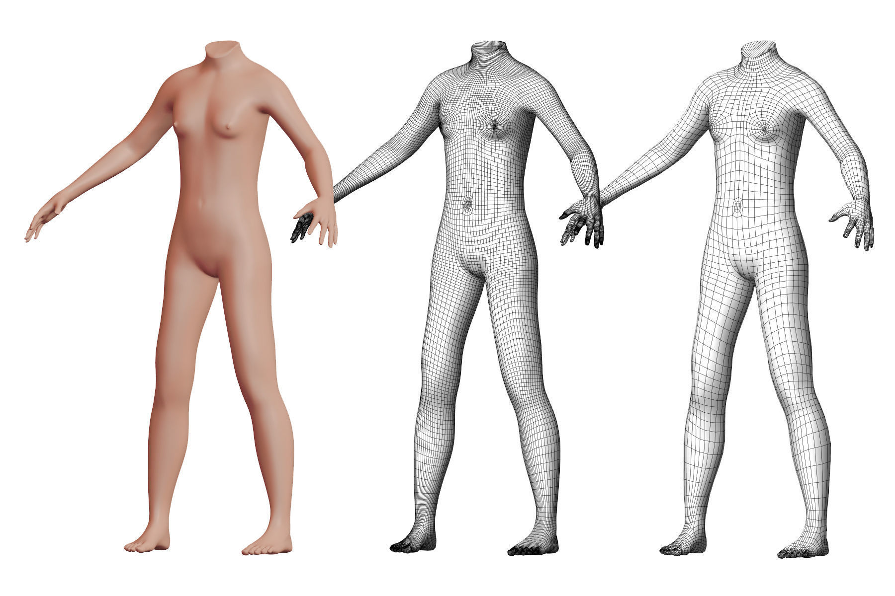 Character 13 High and Low-poly -  Body male