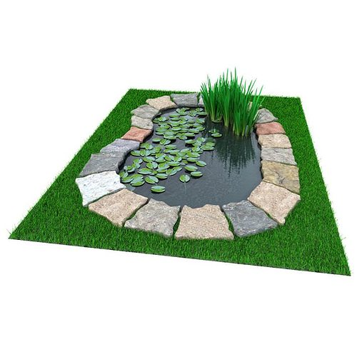 3D model Garden Pond With Foliage  CGTrader