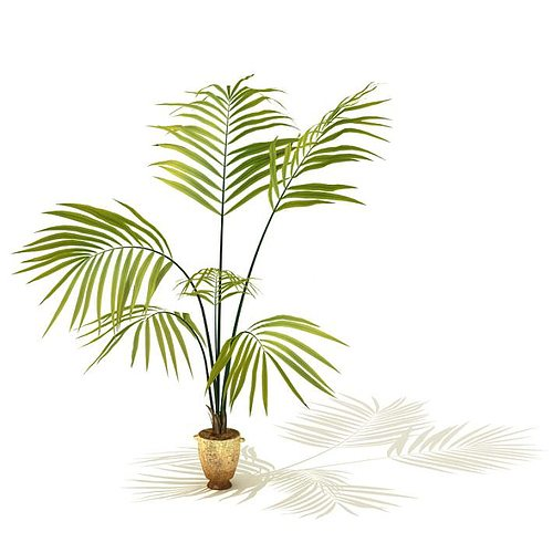 decorative bamboo potted plant 3d model  1