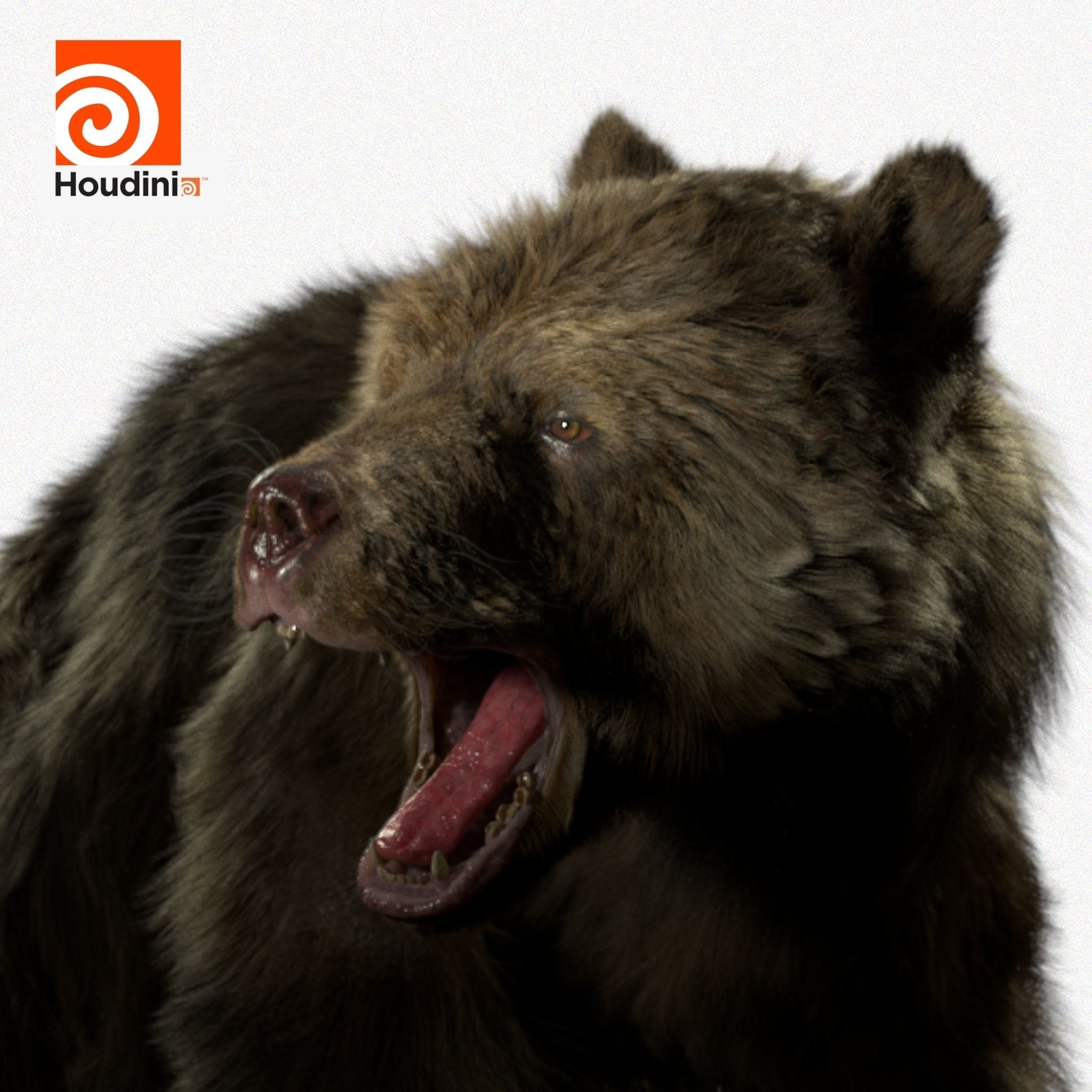 grizzly bear Model Houdini