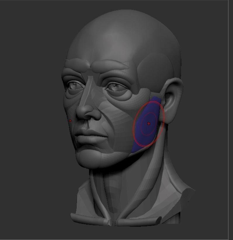 Planar Simplified Male Head 3D Model 3D Printable STL ZTL