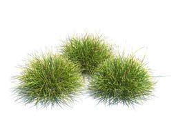 Three Peice Green Landscaping Grass 3D model