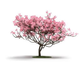 pink tree on grass 3d model