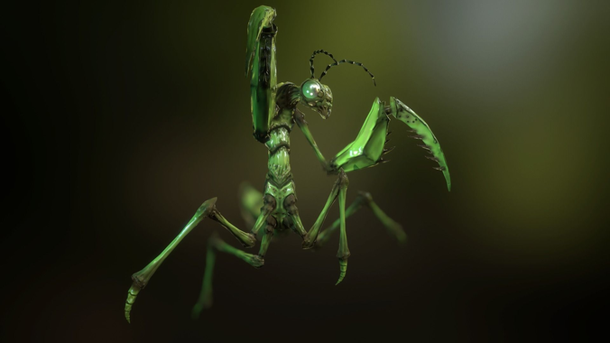 praying mantis 3d model low-poly rigged animated obj fbx blend mtl tga unitypackage 1