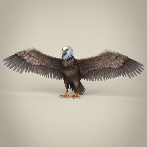 low poly realistic eagle 3d model low-poly max obj 3ds fbx c4d lwo lw lws 1