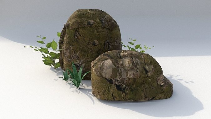 Moss rocks with bushes