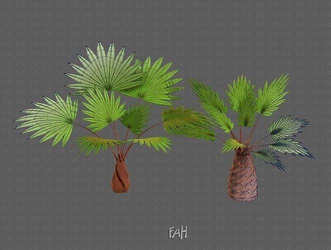 Trees Cartoon V10