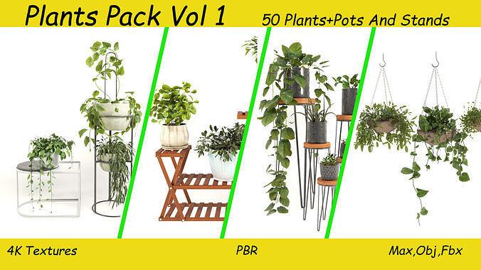 50 Plants Pack Stands Pots