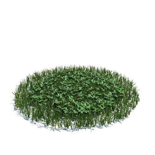 green grass clovers 3d model obj mtl 1