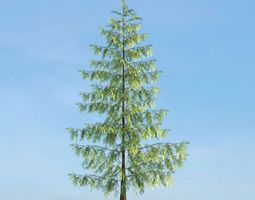 plant 3D model Green Tree