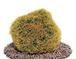 3d round plant