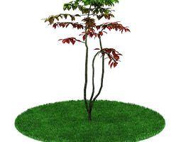 3D model Artificial Garden Plant