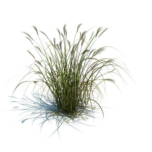 high green grass 3d model obj mtl 1