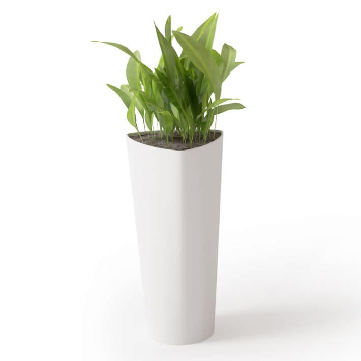 potted plant in tall white vase 3d model obj 1 - Tall Potted Plants