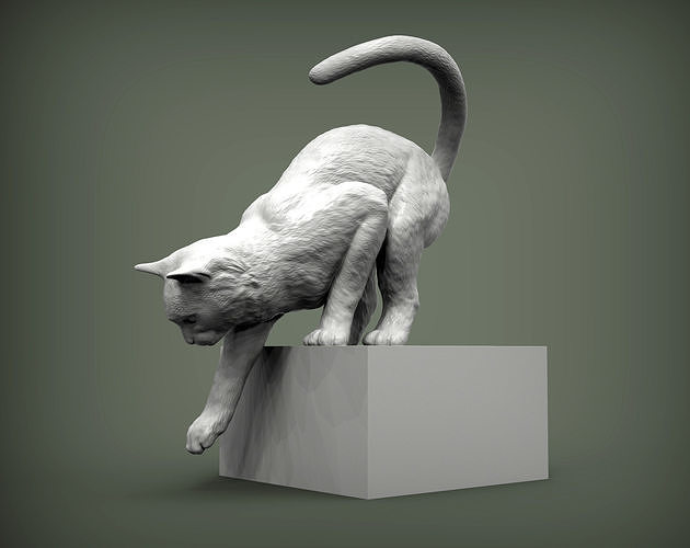Cat for 3d printing