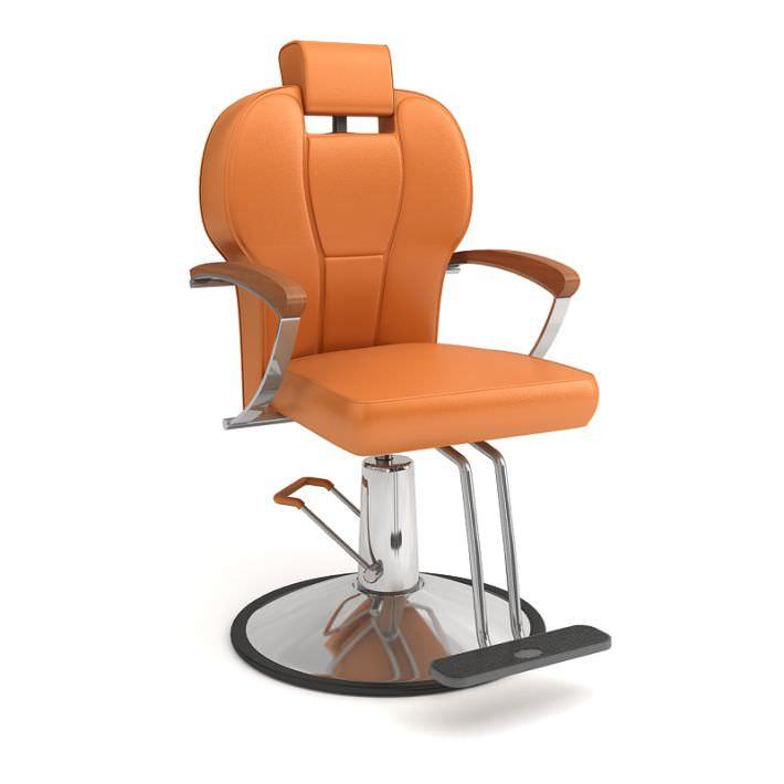 Beauty Salon High End Chair
