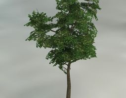 game-ready 3d model trees pack