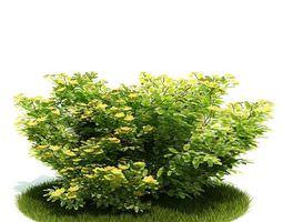 3D model Planted Green Bush