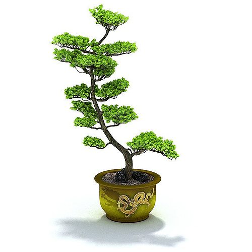 3d Green Potted Plant Leaf Cgtrader