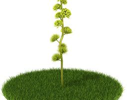 3D model Yellow Flower Plant