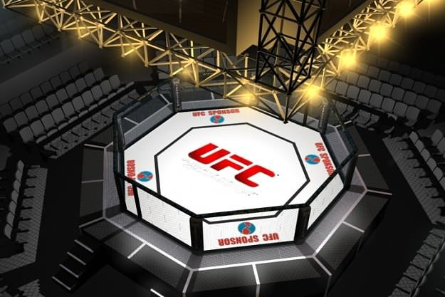 ufc style octagon fighting arena 3d model max fbx tga 1