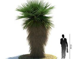 green  palm tree 3d