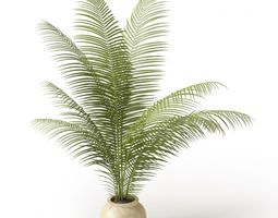 White Clay Potted Fern 3D Model