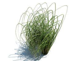 Green Long Grass 3D model