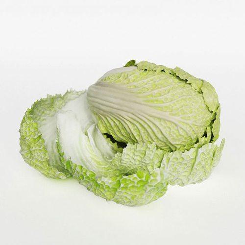 pok choi cabbage 3d model obj 1