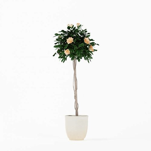 flowering tall potted plant 3d model - Tall Potted Plants