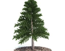 3d decorative miniature tabletop evergreen pine tree
