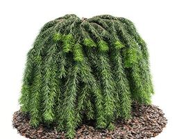 3d green coniferous leaves on a brown forest floor base