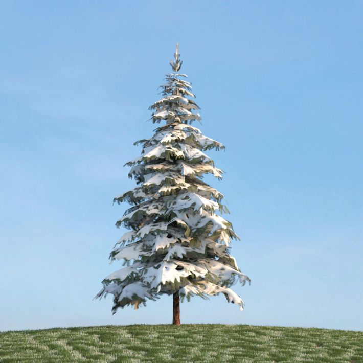 3d model snow covered pine tree cgtrader