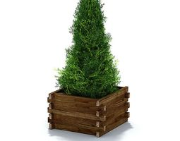 Evergreen Shrub In Weathered Lumber Planter 3D Model