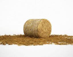 3d hay roll