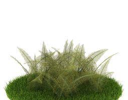 green carpet fern bush 3d model obj
