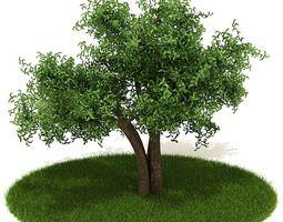 3D model Green Healthy Tree