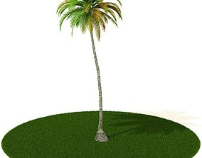 Palm Tree With Grass 3D