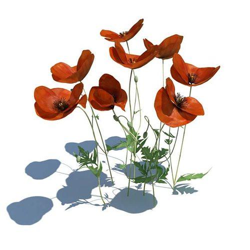 thin red flowers 3d model obj mtl 1