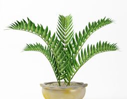 Green Fern Plant In White And Gold Vase 3D Model