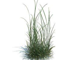 3D Grass Green Weeds
