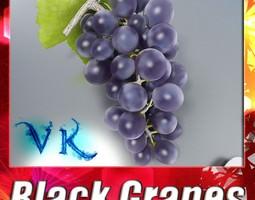 3D Black Grapes High Detail