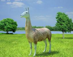 3D model Llama Lama Glama