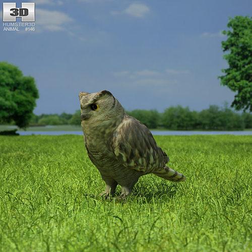 eurasian eagle-owl bubo bubo 3d model max obj 3ds fbx c4d lwo lw lws 1