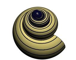 3D printable model Helix Seashell