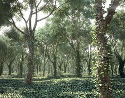 realistic tree collection 3d