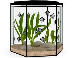 Hexagonal Aquarium 3D